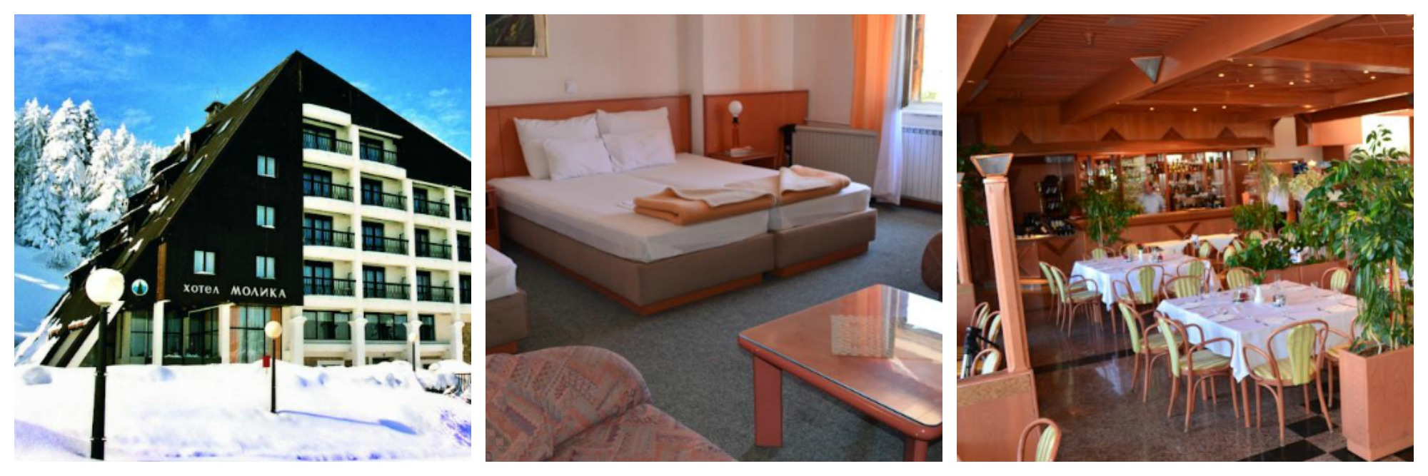 molika-hotel